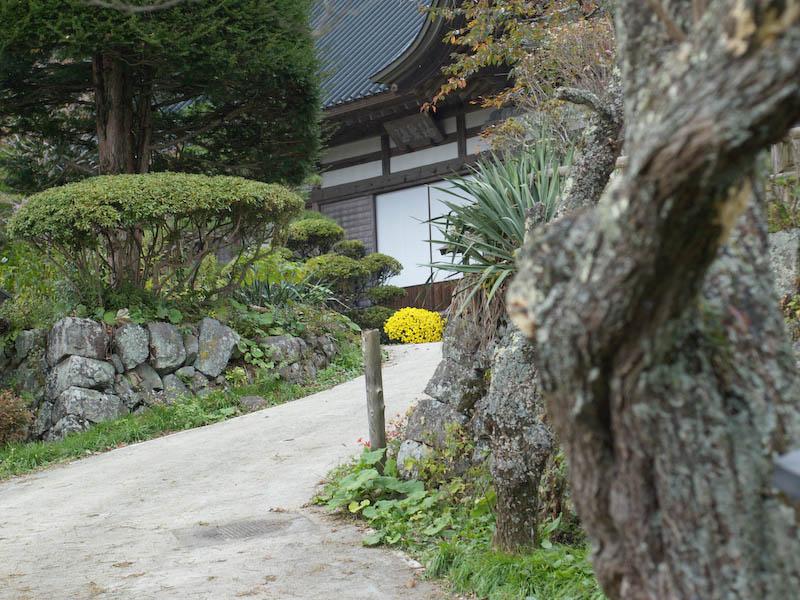 秋の海岸寺を色んなレンズで楽しみました、RIKENON 50mmF2編_c0137403_19531521.jpg