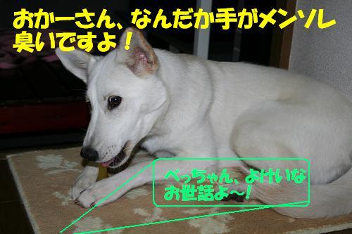 f0121712_15311222.jpg