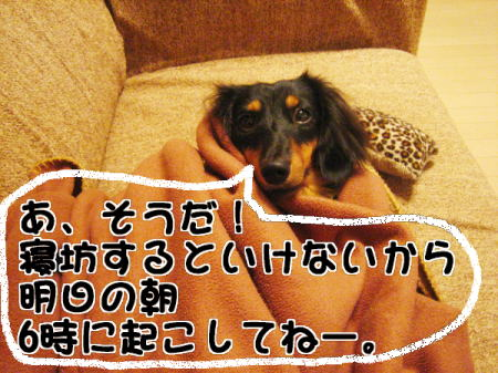 c0106958_15161550.jpg