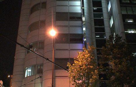 イボイノシシの道草            2007年11月17日_d0083265_0214348.jpg