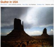 Guitar in USA@Philippe Azoulay_c0146875_21594112.jpg