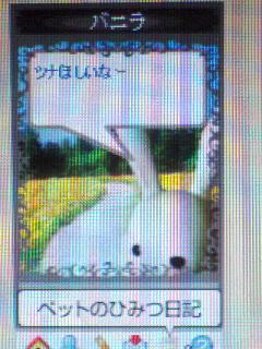 d0034991_2313550.jpg