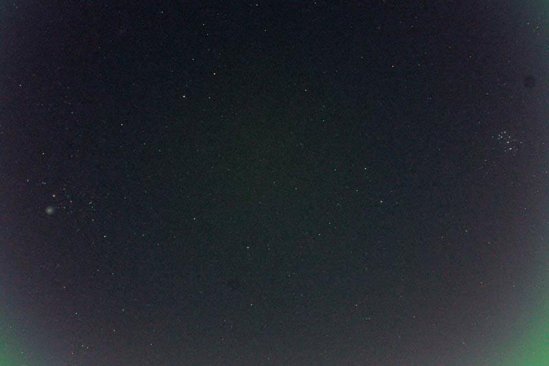 ハクセキレイ/ホームズ彗星_b0024798_6342577.jpg