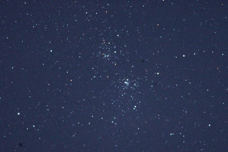 ハクセキレイ/ホームズ彗星_b0024798_6375071.jpg