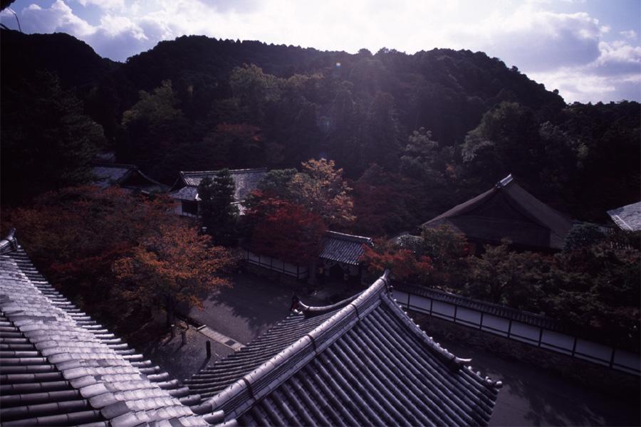初秋の南禅寺2_b0043304_118596.jpg
