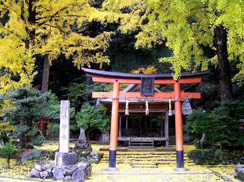 落葉神社_e0048413_22573836.jpg