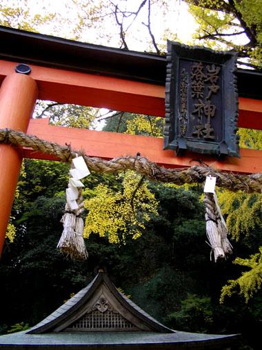 落葉神社_e0048413_22575848.jpg