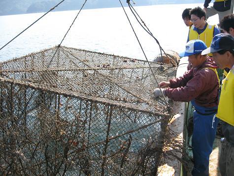 グリーンツーリズム(山・川・海体験)下_e0101917_9304816.jpg