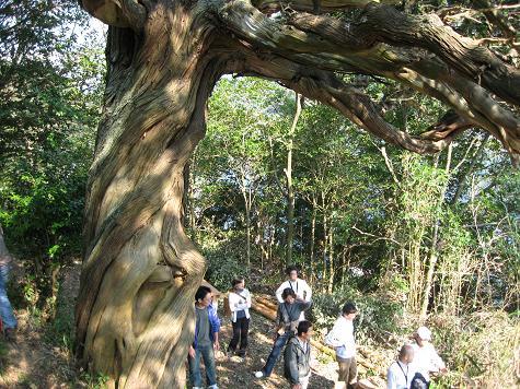 グリーンツーリズム(山・川・海体験)下_e0101917_9344524.jpg