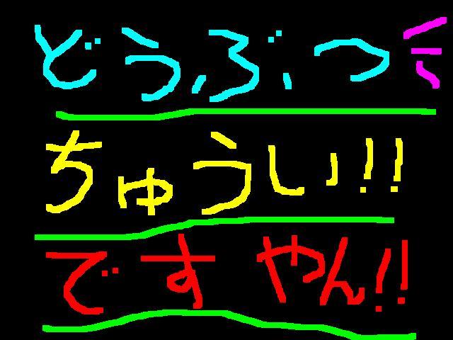 f0056935_19142397.jpg