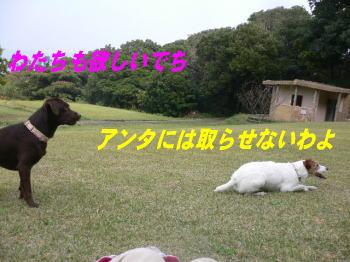 d0013645_2244992.jpg