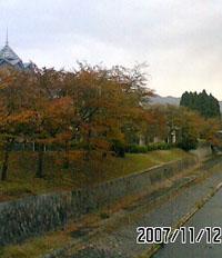 f0103760_19404010.jpg