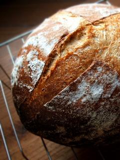 ライ麦10%カンパーニュとプチパン(なたね油4%ハチミツ3%)_c0110869_15161034.jpg