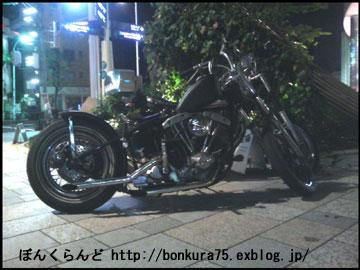 b0080809_1330466.jpg