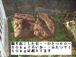f0031037_1918549.jpg