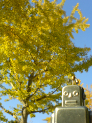 2007年11月19日(月) 紅葉の日本_e0005548_2040278.jpg