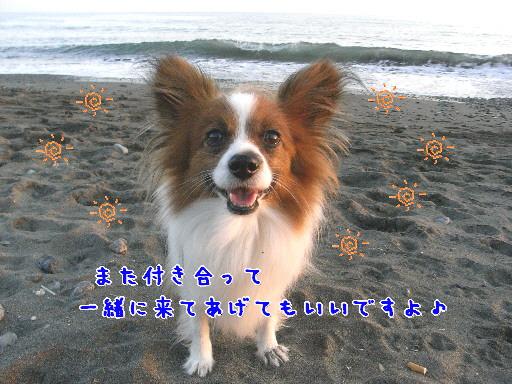 d0013149_026425.jpg