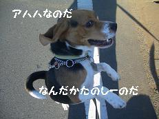 b0098660_20143323.jpg