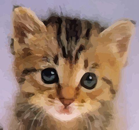 こねこちゃん。描きました_c0081284_1757012.jpg