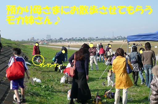 f0121712_15565415.jpg