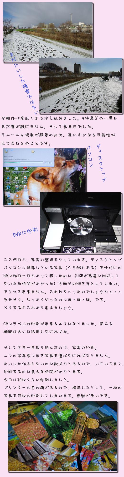 写真印刷_b0019313_16433548.jpg