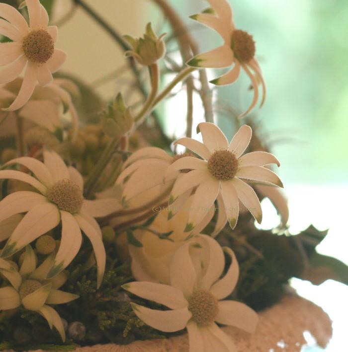 ホテル様への装花 白バラとグリーンネックレス_a0042928_18131385.jpg