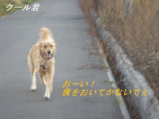 2007年11月18日 清里にて NO2_f0114128_2115134.jpg