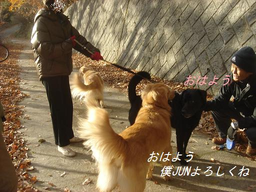 2007年11月18日 清里にて NO2_f0114128_2123078.jpg