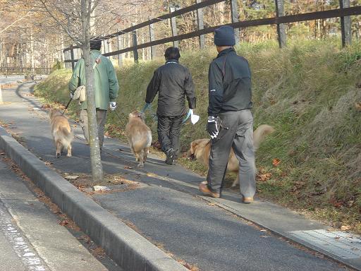 2007年11月18日 清里にて NO2_f0114128_2133186.jpg