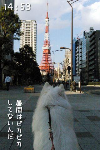 冒険散歩~行きはヨイヨイ編~_c0062832_16504664.jpg