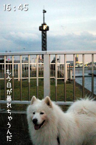 冒険散歩~行きはヨイヨイ編~_c0062832_16514323.jpg