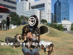 f0098841_1462442.jpg