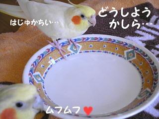 f0132055_18121532.jpg