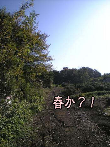 f0043658_22484011.jpg