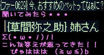 f0072010_3574965.jpg