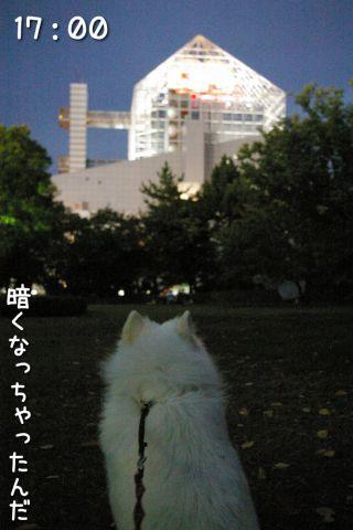 冒険散歩~帰りもヨイヨイ編~_c0062832_16464593.jpg
