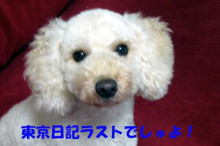 d0070047_20103183.jpg