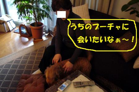 d0070047_20134743.jpg