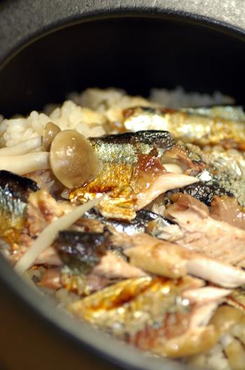 秋刀魚とキノコのご飯_b0016049_1273094.jpg