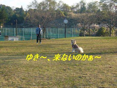 a0100160_2011517.jpg