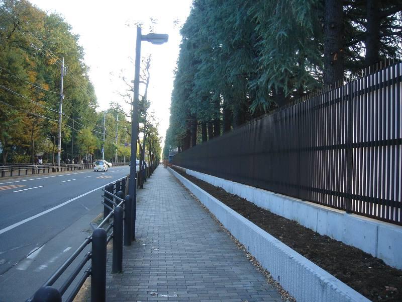 あかしあ通りの景観その後_f0059673_19114564.jpg