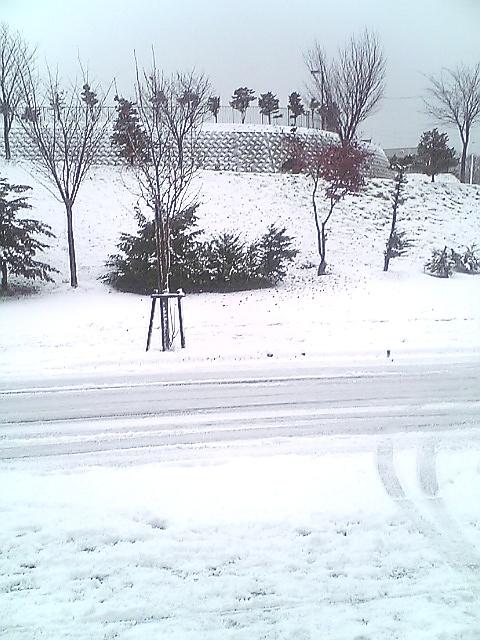 冬景色_a0008185_944351.jpg