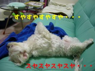 f0145192_15553368.jpg