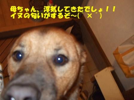 b0087400_0152468.jpg