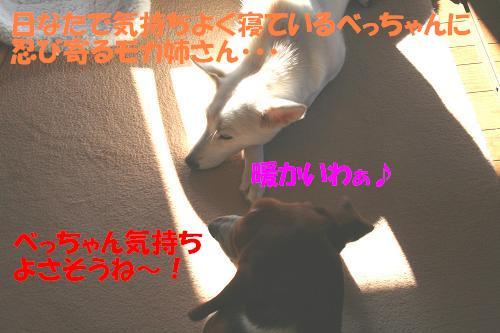 f0121712_16405893.jpg