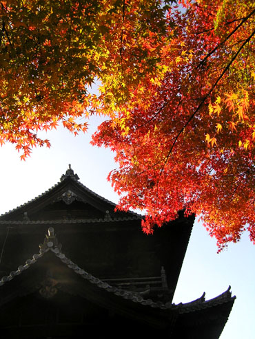 南禅寺1.三門_e0048413_2054368.jpg