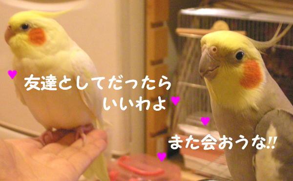 f0132055_013347.jpg