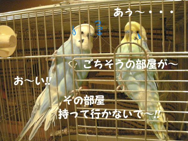 f0132055_0175394.jpg