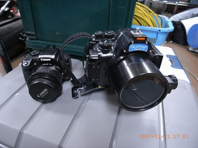b0075059_195759.jpg