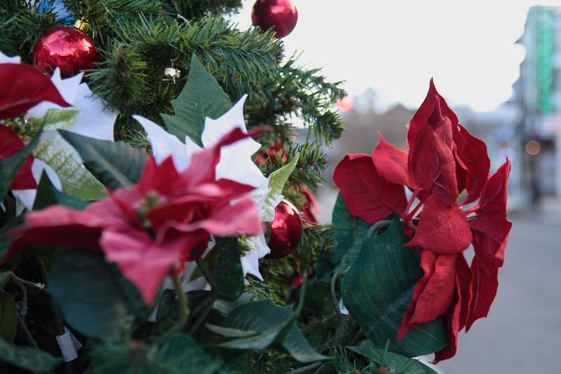 クリスマスの準備_f0091207_0284917.jpg